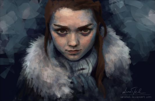 Arya Stark of Winterfell by venellah