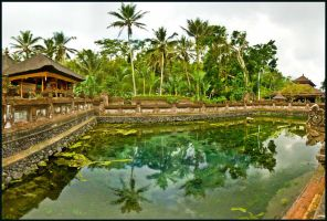 Tirtha Empul Holy Water's by partoftime