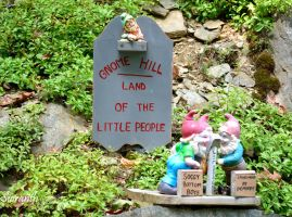 Gnome Hill Goes Country by sioranth