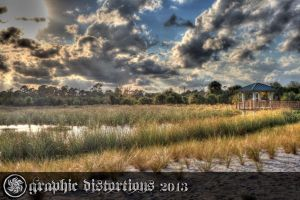 HDR of the wetlands near my house by tjohare