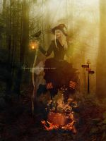 Halloween Witch by maiarcita