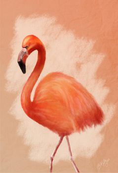 Flamingo by Truley-Unruly