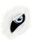 White wolf eye Icon premade by CitrisLime