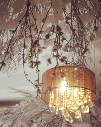 Country Elegance by thyalla