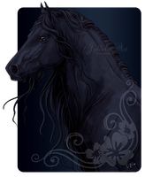 Friesian - How Original by Jullelin