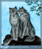 Love wolfs by DTLynx