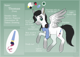 Thomas - Ponysona - Reference Sheet by Forestemni