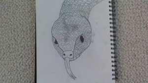 Snake by Camille996