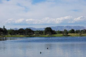 Nature in the Middle of L.A. by Sageous