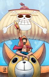 Luffy -I will be the pirate king!!!!!- by hulkred