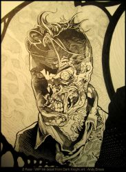 Two Face- Ink by andybrase