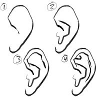 How to draw the Ear by Paperbag-Ninja