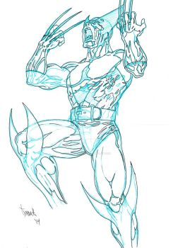 Wolverine WIP by TyndallsQuest