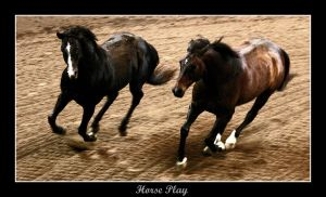 Horse Play by Jen2Cal