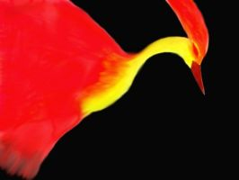 Fire bird by Goldsturm