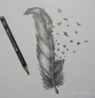 Feather by EraOcean