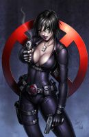 Domino Color commission by Sabinerich