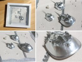 3D Horseshoe Crab Assemblage by Sarahorsomeone