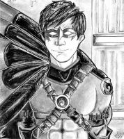 The Third Robin--Tim Drake by GodzNinja