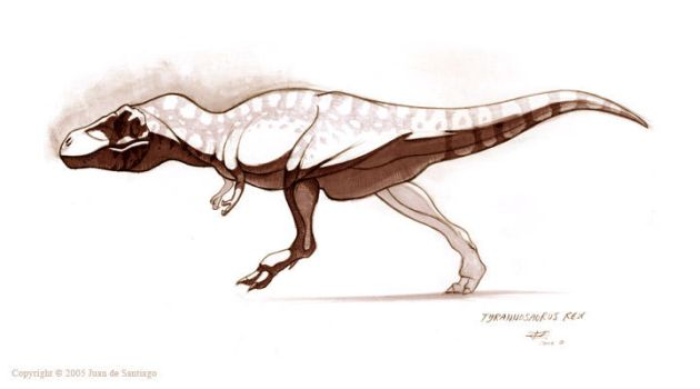 Tyrannosaururs Rex by Red-Dilopho