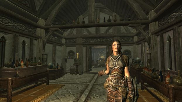 Party at the Dovahkiin. Part 2. Welcome by totalfreak2002