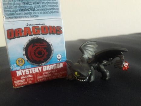 2017 DW Dragons Mystery Dragon Toothless Figure 1 by PokeLoveroftheWorld