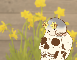 Daffodil - Whatever Happened To The Florist by LukaFawn