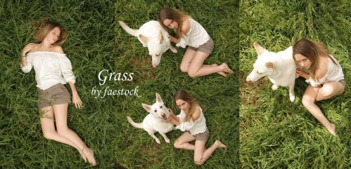 Grass2 by faestock