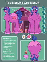 Reference Sheet - Tea and Cee Biscuit by chibiBiscuit