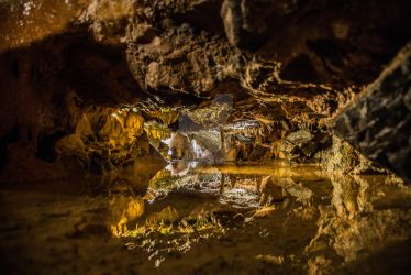 Pool of Water in Wookey Hole Cave by photographybypixie