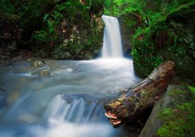 White Spring Waterfall by lica20