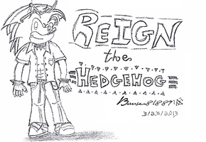 Reign the Hedgehog by Bowser81889