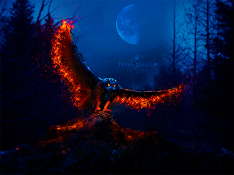 Fire owl by Nina-Visallo