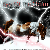 Eye Of The Storm by Explicit18