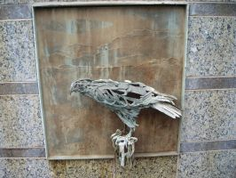 Truckee River Walk: Eagle by rifka1