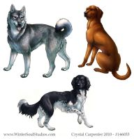 Dog Breeds - Part Two by soulofwinter