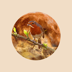 12 Full Moons 2018 - March - Worm Moon by Loupii