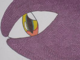 Dragon eye and scal by cat55