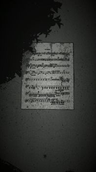 Music in the Street by Apheline