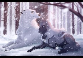 Collab: Snowed In by Tazihound