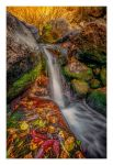Autumn Brook by EtherealSceneries