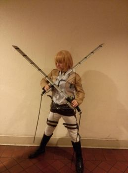 Attack on Titan Cosplay 2014 Evillecon by StormyNight79