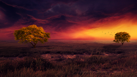 When the sky is burning by Ellysiumn