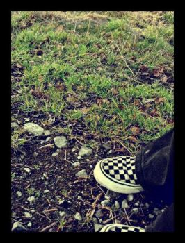 vans and grass. by lack-of-sanity