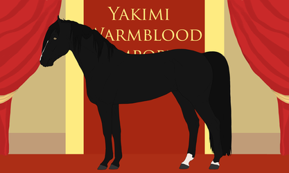 Yakimi Warmblood Import#7 by Weidenhof