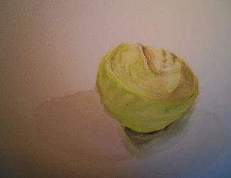 Chou/ cabbage by Alicecab