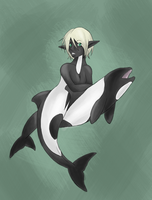 + Commerson's Dolphin - by Kanti-Kane
