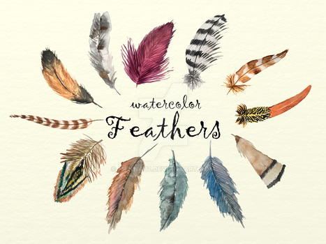 Watercolor Feather Collection by menna97