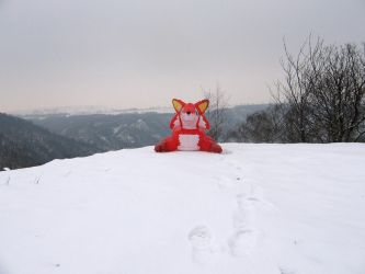 With the Fox on a snow by Alan7812