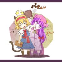 Alice and Patchouli by pakapom